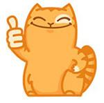 Набор стикеров «Персик» для Телеграмм